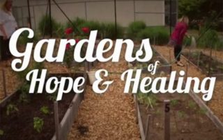 Cancer Care, Gardening