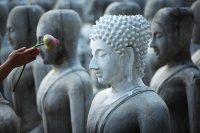Where Did Mindfulness Originate