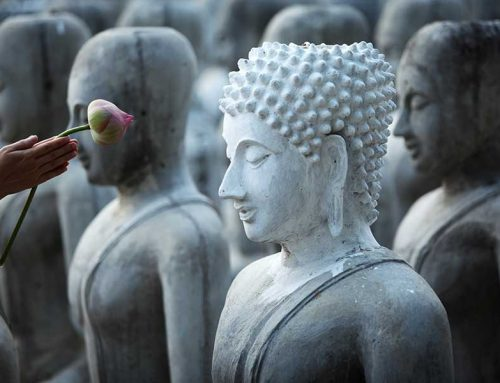 Where Did the Idea of Mindfulness Originate?
